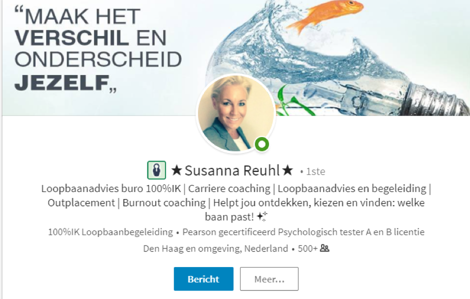 susanna Reuhl linkedinprofiel blog